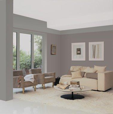 Carrelage gris et mur taupe - livraison-clenbuterol.fr